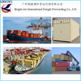 중국에서 파라 카스, 페루 효율적인 배송 에이전트