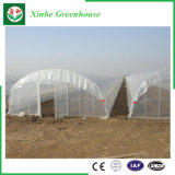 Serra del film di materia plastica di agricoltura per piantare