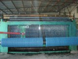 Galvanisé et PVC Coated Hexagonal Wire Mesh