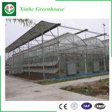 Intelligentes Glasgewächshaus für die Landwirtschaft