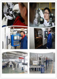 Qualitäts-Fabrik-Preis-lineare Peilung-Serie (LMB 10UU)
