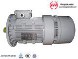 Hmej (Wechselstrom) Aluminiumelektrischer Magnetbremse Indunction Dreiphasenelektromotor 180L-8-11