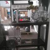 Stazione di servizio di riempimento della pompa di singole pompe e di due visualizzazioni dell'affissione a cristalli liquidi