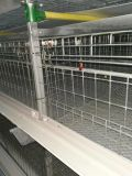 Cage automatique de poulet de matériel de volaille