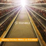 최신 유형 자동적인 가금 농장 감금소 층 또는 암탉 또는 계란 닭을%s 판매