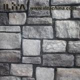 Piedra de la construcción, azulejo de piedra de la pared del material de construcción de la pizarra del arte (YLD-80003)