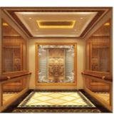 Serviço do OEM do elevador do passageiro 1m/S com quarto pequeno da máquina