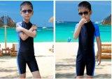 고품질 아이의 짧은 소매 Sportwear&Lycra 한 조각 Waterwear