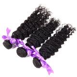 L'armure crépue mongole de cheveu bouclé de Vierge 3 paquets, cheveu bouclé crépu mongol bon marché de Vierge tisse les paquets bouclés de cheveux humains de 100%