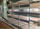 農場(Hのフレームタイプ)のための自動熱くか冷たい亜鉛めっきの熟練した技術の肉焼き器鶏電池ケージ