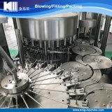 Planta de relleno embotelladoa del agua mineral del surtidor de la fábrica con la línea completa