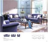 Классицистическая мебель софы ткани для живущий комнаты