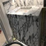 Marbre de marbre matériel de blanc de l'Italie Arabescato de tuile de mur de décoration aînée de villa