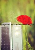 Integriertes helles Solarstraßenlaternesolar der Qualitäts-100W