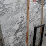 Мрамор белизны Италии Arabescato плитки стены старшего украшения виллы материальный мраморный