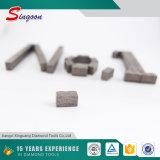 Het hete Segment van de Diamant van de Verkoop voor het Knipsel van het Graniet