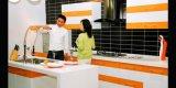 Gabinetes de cozinha superiores do vidro acrílico (zv-012)