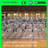500 van de bout Gezamenlijk van de Bundel/van het Aluminium Stage/Stage Lighting/Display Stands/Lighting Van de truss/Light- Vertoning System/Mobile Stage/Aluminum Truss/Truss Display/Truss- Project