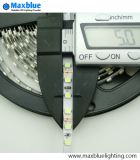 12/24VDC nastro stretto dell'indicatore luminoso di striscia di larghezza 5mm SMD3528 5mm LED