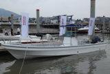 中国Aqualand 32feet 9.6mのガラス繊維の漁船かパンガ刀のボート(320PRO)