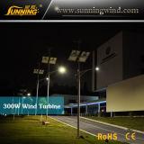 Sistema ibrido solare dell'indicatore luminoso di via dell'alimentazione elettrica del vento/(illuminazione del LED)