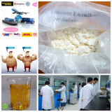 Steroidi Trenbolone Enanthate di colore giallo di sviluppo del muscolo con trasporto sicuro