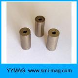 Magneet de op hoge temperatuur van SmCo van de Vorm van de Ring van de Weerstand