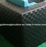 Nuova mobilia del rattan del sofà del giardino di disegno 2014 (S0163)
