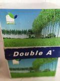El papel de copia A4 70GSM 75GSM 80GSM dobla a
