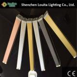 Indicatore luminoso Emergency portatile del LED con la batteria ricaricabile