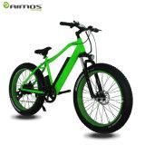 隠された電池のSANYO電池の電気バイクか雪の電気自転車