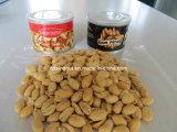 Cacahuete asado y Salted (estaño, bolso)