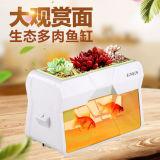 Tanque de 2017 pescados de acrílico de la venta caliente creativa del diseño el mini