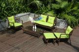 屋外の藤の庭の家具