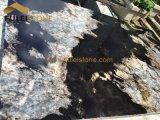 新天地のGagellanicの花こう岩の平板