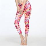 Polainas del deporte de las mujeres que funcionan con los pantalones de la aptitud y de la yoga del desgaste