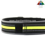 Collare di cane registrabile di alta qualità del poliestere di colore solido di stile 15~20mm di sport di Caldo-Vendita con la striscia riflettente & il Velcro
