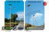Luz de rua solar direta do diodo emissor de luz IP65 da fábrica