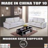 Europäische Art-Möbel-heiße Verkaufs-Leder-Couch