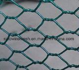 Sailin PVC 6각형 치킨 와이어 그물세공