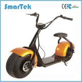 Usine de Smartek vendant la qualité pour le scooter électrique Citycoco S-H800