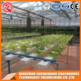 Serre van het Blad van het Polycarbonaat van de Hydrocultuur van de Spanwijdte van de landbouw de Multi voor het Plantaardige Groeien