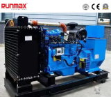 Enclosed комплект генератора газа 24kw/30kVA