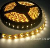 luz de tira de 12W SMD 2835 LED