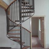 Подгонянный случай лестницы спирали нержавеющей стали в самомоднейшей конструкции