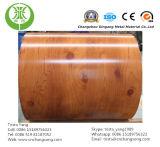 Grano de madera prepintado galvanizado/bobina de acero del Galvalume