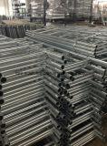 HDG-Stahlstrichleiter für Ringlock Baugerüst