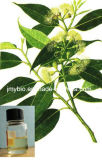 Reiner natürlicher Cineole 80% heißer Eukalyptus-wesentliches Öl, CAS: 470-82-6, Aroma-Öl, Pflanzenöl
