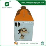 Katze nehmen Haustier-Kasten weg