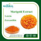 Lutein, Zeaxanthin-Ringelblume-/Calendula-Blumen-Auszug-Pflanzenauszug